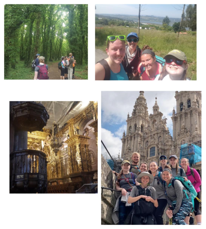 Camino in Spain
